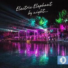Electric Elephant – #Tisno – 9-13 July 2015 #Croatia #travel #destination #festivals # music #fun