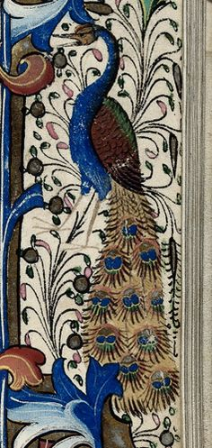 Peacock, detail from a floral border at the beginning of Matins of the Virgin. Book of Hours, Use of Sarum ('The Hours of the Earls of Ormond'), c. 1460 (London). BL MS Harley 2887, fol. 29