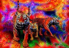 Psychedelic Tigers  by JT Digital Art