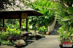 Bali Garden On Pinterest Balinese Garden Tropical