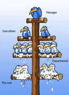 Agency org chart?