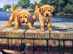 Introduckshuns by Jim Lamb