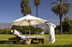 Amazing hotel in Morocco, Taroudant www.boutiquehotelgazelledor.com #hotel #charme #morocco #taroudant #luxury Small Boutique Hotels, Fragrant Roses, Orange Grove, Moroccan Style, Hedges, Palm Trees, Exotic, Patio, Morning Breakfast