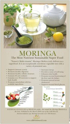 """Commonly called the """"drumstick tree"""" (from the appearance of the seed-pods), Moringa is the only genus in the family Moringaceae. It is a source of myrosinase, which can re-activate the cancer fighting properties of previously frozen broccoli. It is a fast-growing, drought-resistant tree, native to the southern foothills of the Himalayas in northwestern India. Natural Medicine, Herbal Medicine, Herbal Remedies, Health Remedies, Health And Nutrition, Health And Wellness, Health Tips, Zeal Wellness, Moringa Benefits"""