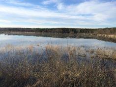 Lagoa Sacra en inverno. (Silleda-A Estrada-Forcarei).