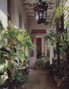 derelict tropical mansion hallway!