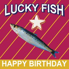 Lucky Fish birthday greeting card for Kinky Rhino Greeting Cards in South Africa Happy Birthday Wishes For Him, Man Birthday, Birthday Quotes, Birthday Greeting Cards, Birthday Greetings, Heritage Day South Africa, Congrats Wishes, Happy B Day, Uplifting Quotes