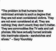 """The problem is that humans have victimized animals to such a degree that they are not even considered victims. They are not even considered at all.  They are nothing; they don't count; they don't matter. They are commodities like TV sets and cell phones. We have actually turned animals into inanimate objects-sandwiches and shoes."""" ~ Gary Yourofsky"""