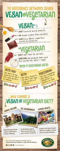The differences between vegan and all the variations of vegetarianism are made simple through this helpful infographic!