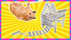Игровой дом - шалаш с лестницей для хомяка.  Игровой дом с лестницей