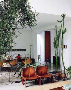 The home of Maurizio Zucchi, owner of brand  Zucchi