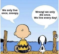 True words ☝🏻❤️ snoopy saying wisdom saying saying saying . - True words ☝🏻❤️ snoopy saying image wisdom saying proverb truth truth words claims thought - Wisdom Quotes, True Quotes, Motivational Quotes, Funny Quotes, Funny Memes, Inspirational Quotes, Quotes Quotes, Charlie Brown Quotes, Charlie Brown And Snoopy