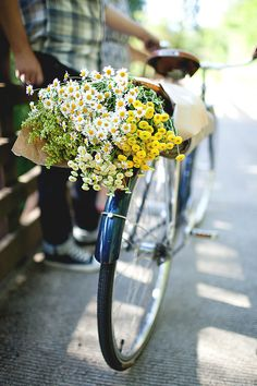 bike, cycle, style, flowers, daisys, cut flowers, bouquet