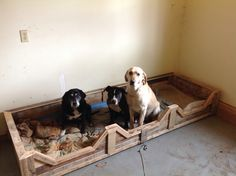 3 dog bed made completely from 100% recycled pallets.