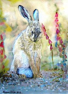 Verlegen Hare mooie Giclee Print van aquarel en inkt schilderen op aquarel…