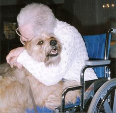 Therapy Dogs International - how to prep your dog to be a therapy volunteer.