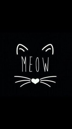 Meow cute wallpapers, dark phone wallpapers, phone backgrounds, wallpaper b Wallpaper Fofos, Cat Wallpaper, Iphone Wallpaper, Black Wallpaper, Crazy Cat Lady, Crazy Cats, Phone Backgrounds, Wallpaper Backgrounds, Lettering