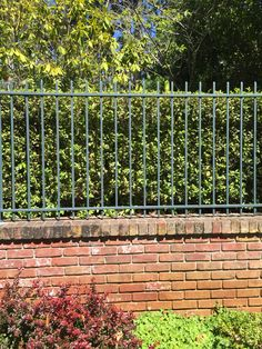 Front wall. All brick (or stucco w brick cap) and wrought iron fence on top. Privacy hedge behind.