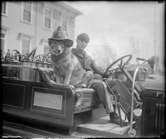 This fire truck dog, 1928 | 20 Adorable Dogs Of The '20s ♡... Re-pin by StoneArtUSA.com ~ affordable custom pet memorials for everyone.