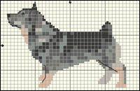 Swedish Vallhund Free Cross Stitch / Knitting Pattern
