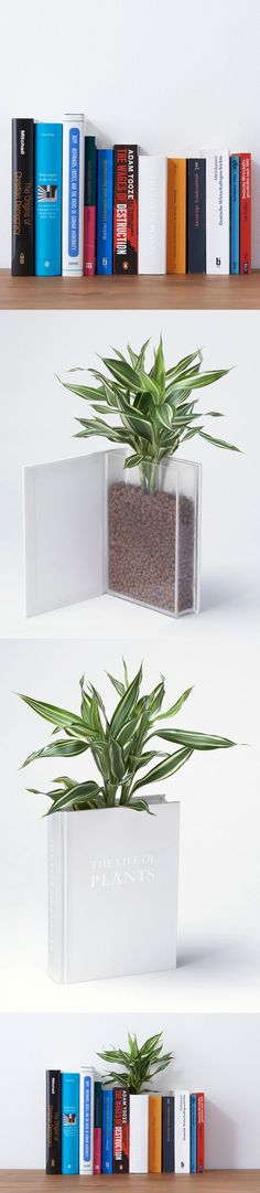 Ingeniosa maceta en un libro / YOY Design Studio