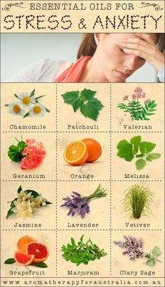Aromatherapy For Australia: 12 Essential Oils For Stress & Anxiety