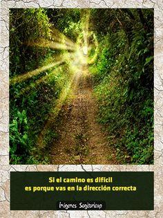 Paisaje  Si el camino