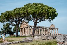 Archaelogical Site of #Paestum, come to discover the #doric #temples! #history #romanamphitheater #museums #greektemples #dorictemples #temples #magnagrecia #southofitaly #visititaly #visitcilento #visitpaestum #cilento #sea #sun #picoftheday #temples #archaelogicalsite #paestumarchaeologicalsite #riunsofpaestum #doric #roman