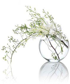 white flowers in vase - lovely simple arrangement Ikebana Arrangements, Ikebana Flower Arrangement, Flower Vases, Flower Art, Cactus Flower, Table Flowers, Love Flowers, White Flowers, Beautiful Flowers
