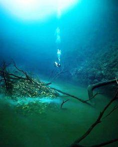 Underwater river in  in cenote Angelita, Mexico