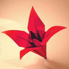 Origami istruzioni in italiano per creare con la carta gli origami.