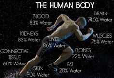 The Human Body Pictu