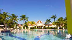Sandals Whitehouse, Jamaica   Review Part I   Jon & Kelsey