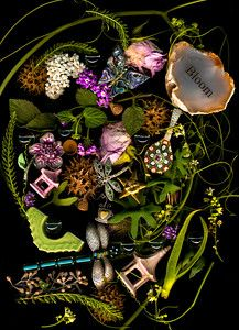 Digital Still Lifes and Visual Biographies. Award Winning Photography, Still Life, Floral Wreath, Bloom, Halloween, Image, Flower Crowns, Wreaths, Spooky Halloween