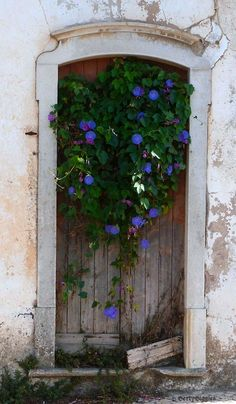 With the addition of a flowering vine, an old door finds new life...