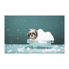 Homemade Dog Shampoo, Pet Shampoo, Homemade Tick Repellent, Natural Dog Shampoo, Coconut Oil For Dogs, Coconut Milk, Dog Spa, Dog Wash, Flea And Tick
