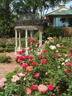 Furman Rose Garden - a beautiful sight Spring will bring my roses ...