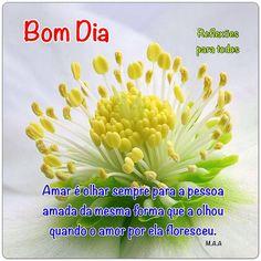 Acesse: Bom dia!, com várias frases de Amar é...  #flores