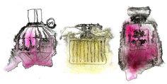 perfume illustrations.