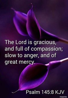 Psalm (KJV) 8 The Lord is gracious, and full of compassion; slow to anger, and of great mercy. Biblical Quotes, Prayer Quotes, Religious Quotes, Bible Verses Quotes, Bible Scriptures, Spiritual Quotes, Bible Verses About Faith, Scripture Cards, Spiritual Messages