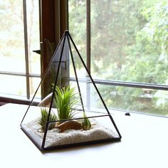Glass Pyramid Terrarium