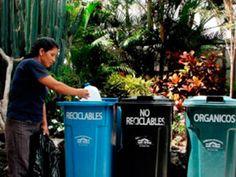 Renewable energy from organic waste