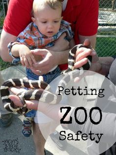 Tips for Petting Zoo Safety