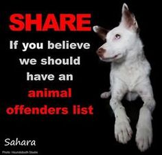 Repin If you believe we should have an animal offenders registry. So that shelters can check on the people who are adopting!Every state needs to petition for this list to become law. People,don't put pets up for adoption in the newspaper, they can be sold for testing,for fighting dog bait,or just kept to torture! All the animal abuse/torture/kill has to be taken seriously by everyone, police, government officials! If we let it go on, what does it say about us?