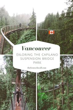 Ever thought about visiting the capilano suspension bridge in Vancouver? I spent the day exploring this super fun and gorgeous park and here's how it went ;)