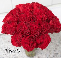 Hearts-Red-Rose-by-Nevado-Roses