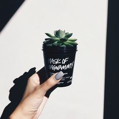 "101.2rb Suka, 535 Komentar - Lush Cosmetics North America (@lushcosmetics) di Instagram: ""Our recycled black pots make the perfect #diy planters. Double tap if this is giving you some…"""