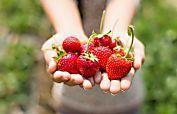 11 alimentos que deberías evitar ahora mismo