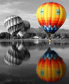 Black and white hot air balloons and coloured one. #photography #black