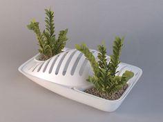 Design Milk brings you Fluidity Dish Rack Planter by DesignLibero